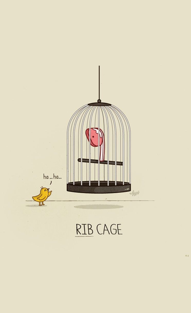 Rib Cage - Funny iPhone wallpapers @mobile9   Обои для