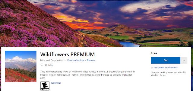 أضافت شركة مايكروسوفت حزمة سمات جديدة إلى متجر Microsoft لمستخدمي نظام التشغيل Windows 10 تحتوي حزمة السمات الجدي In 2020 Wild Flowers Windows 10 Computer Programming