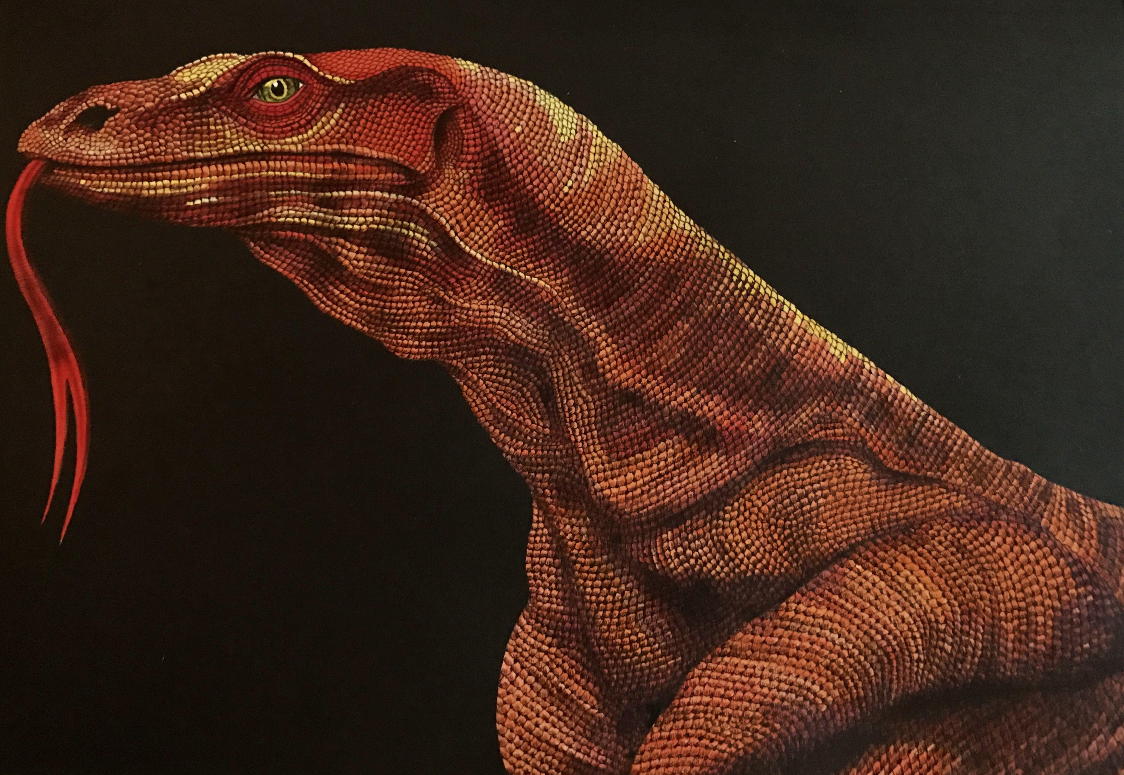Komodo Dragon by Jo Warren | intricate ink | Pinterest
