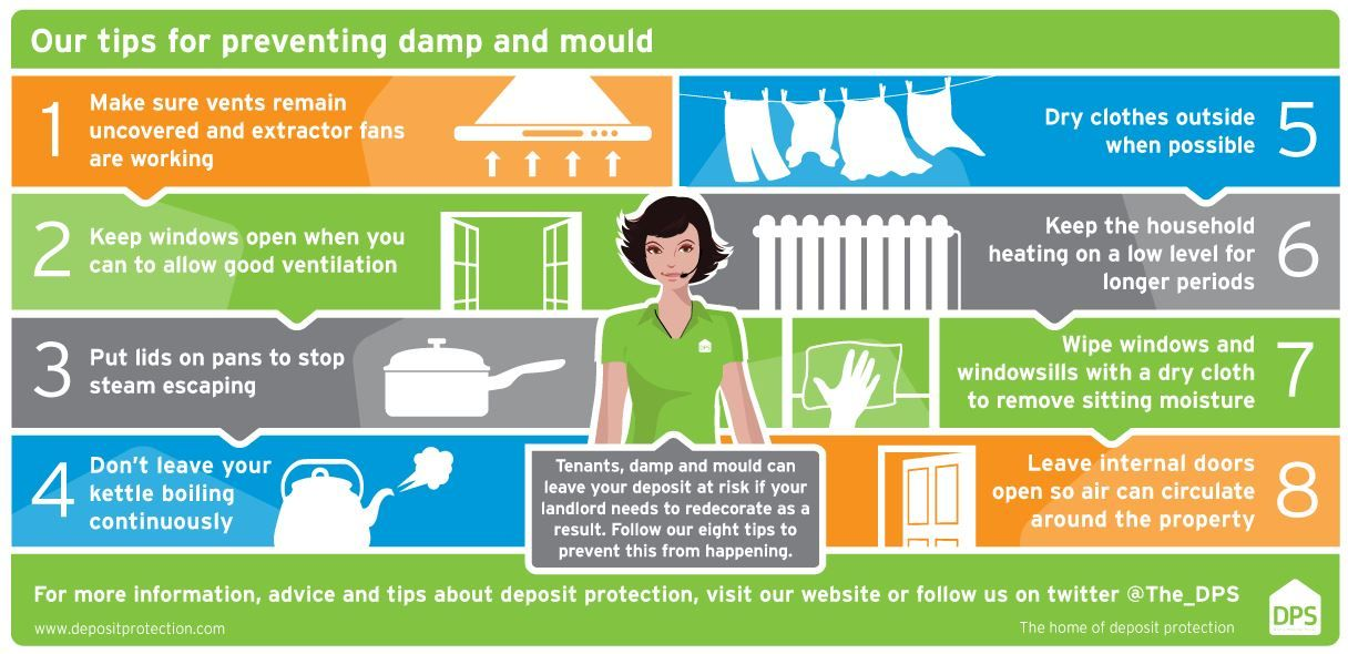 Landlords Help tenants stop damp & mould from occurring