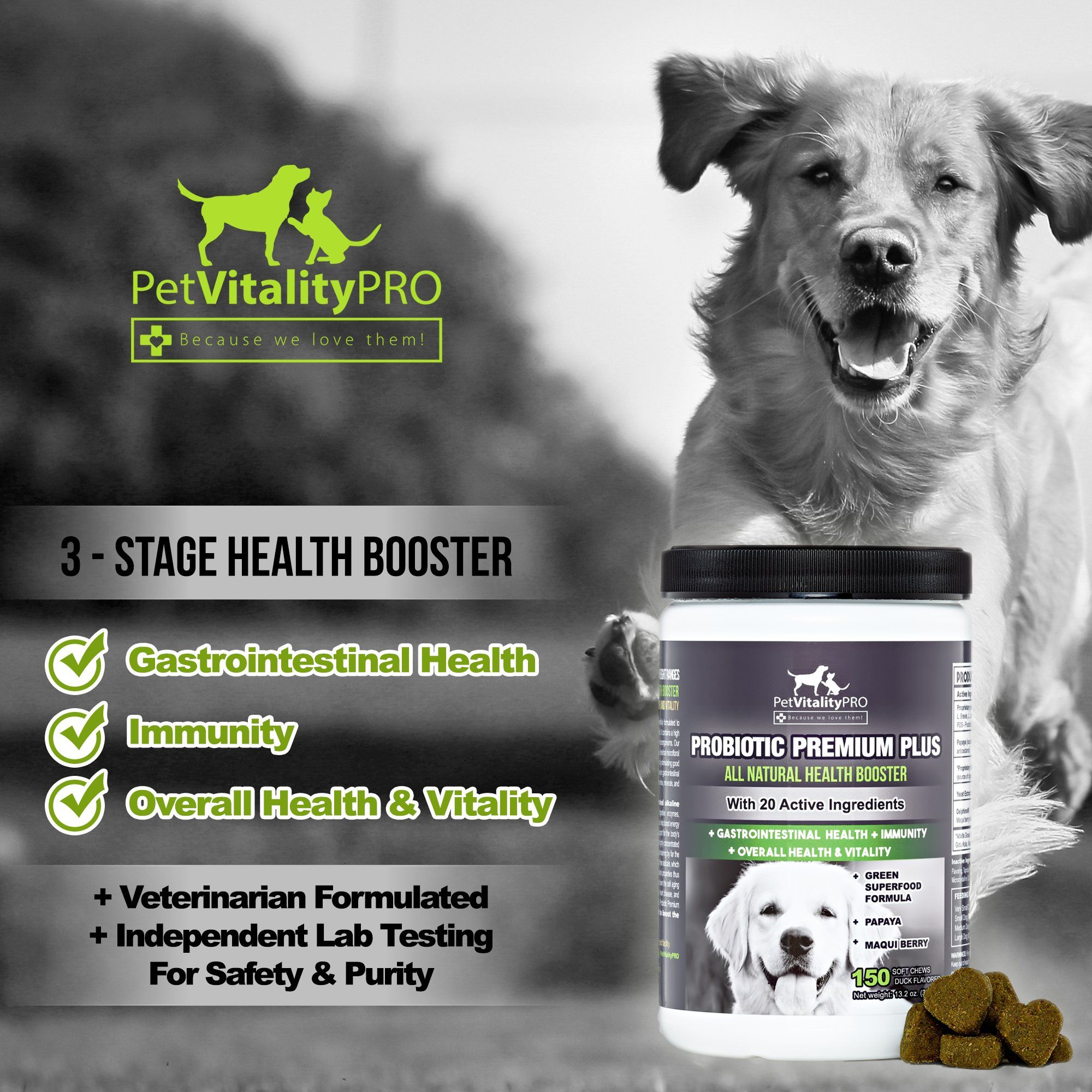 Probiotics For Dogs With Natural Digestive Enzymes A Dog