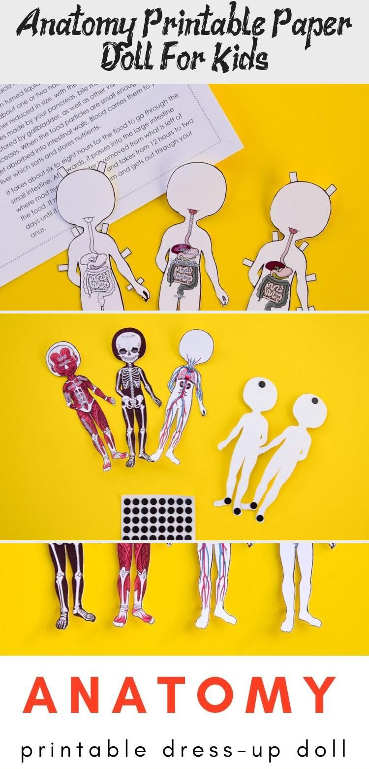 Anatomy Printable Paper Doll For Kids   Paper dolls ...