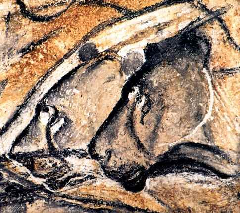 Deux Tetes De Lions Peintures Prehistoriques Grotte Chauvet
