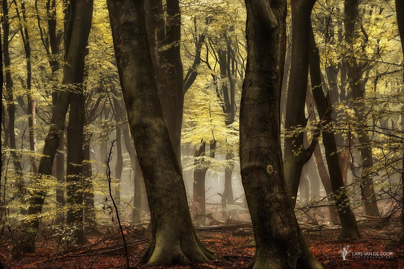 "Best Seen on Black, hit the M <a href=""http://larsvandegoor.com/products/"">