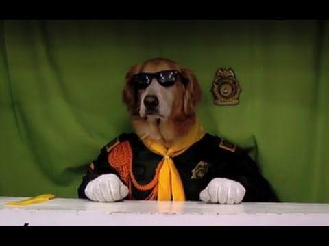 Perro Policia en conferencia sobre como tratar Mascotas- TvAgro por Juan...