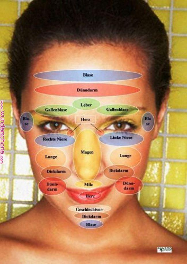 Pin von Eugene auf Gesicht | Gesundheit, Gesundheit Fitness: __ cat__, Reflexzonenmassage ...   - me...