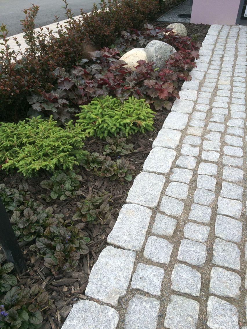 Erivärisillä kasveilla voi luoda tunnelmia. http://www.rudus.fi/pihakivet