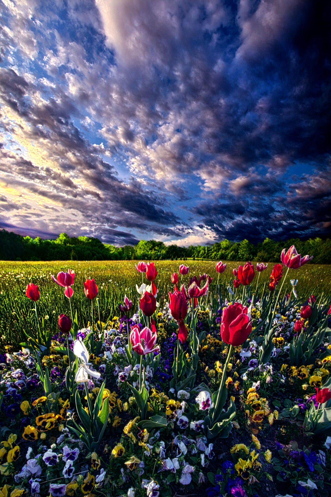 Spring Day By Phil Koch 500px Beautiful Nature Beautiful Landscapes Nature Photography