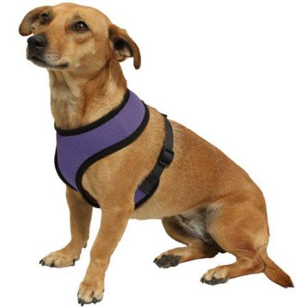 Pets Dog Harness Pets Pet Collars