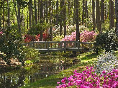 Callaway Gardens Pine Mountain Ga Botanical Gardens