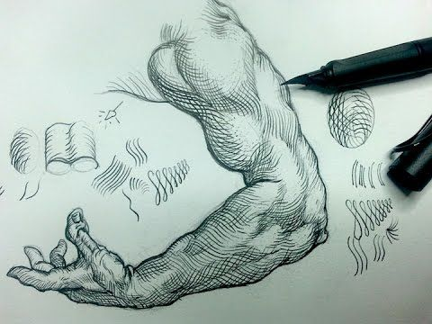 Pen & Ink Drawing Tutorials | How to shade the arm with