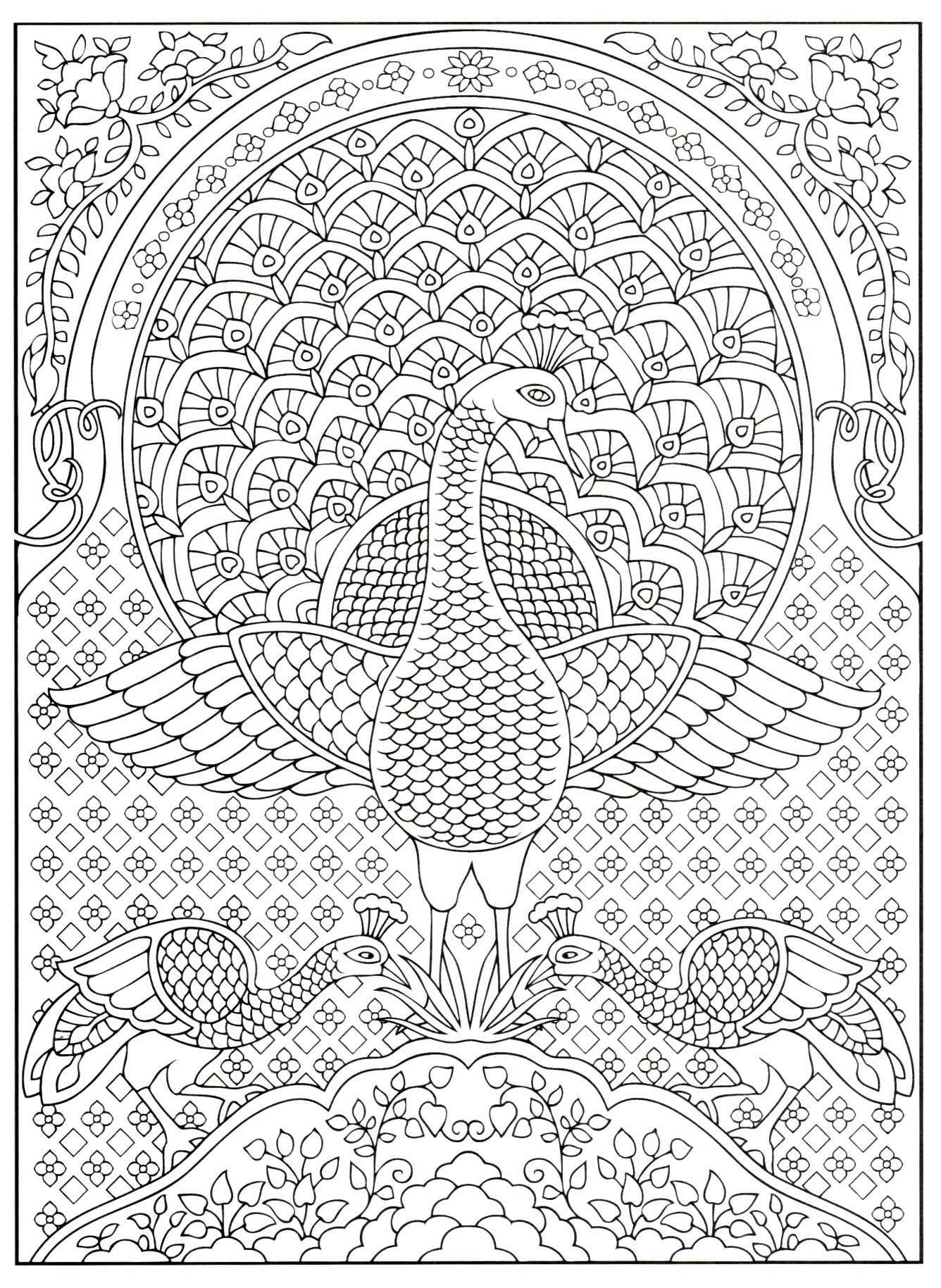Creative Haven S Peacock Designs Peacock Coloring Pages