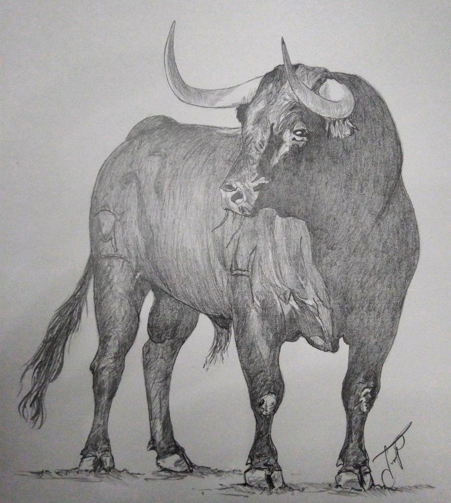 Pin De Miguel Rodriguez En Animales Dibujos De Toros Toros