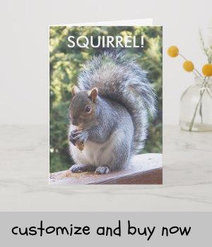 Funny Squirrel Birthday Card Zazzle Com Squirrel Funny Funny Birthday Cards Birthday Cards
