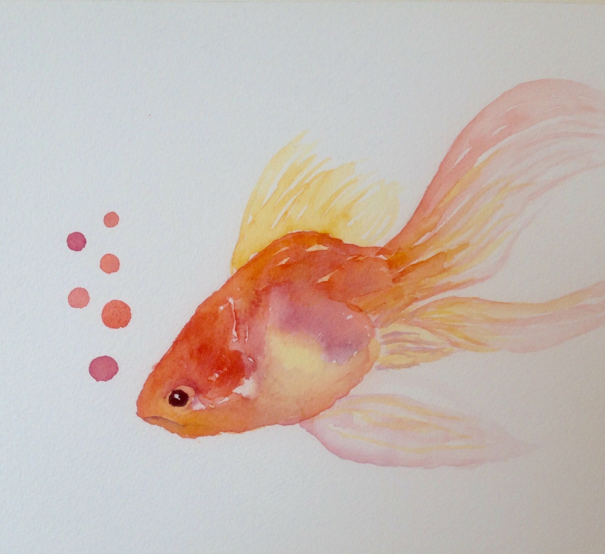 Here Fishy Goldfish Watercolor Fish Painting Koi Art