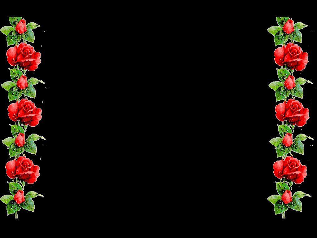Red Roses and Green Leaf Border design 2016 sadiakomal