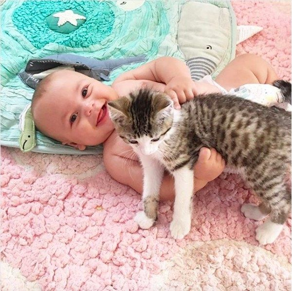 17 PRECIOUS PHOTOS OF CATS AND BABIES JUST BECAUSE Cats