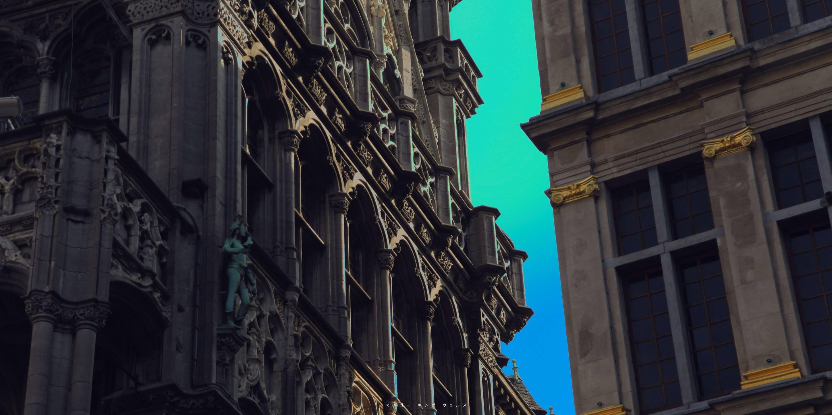 ©マンゴー キング ウェルス Brussels photo