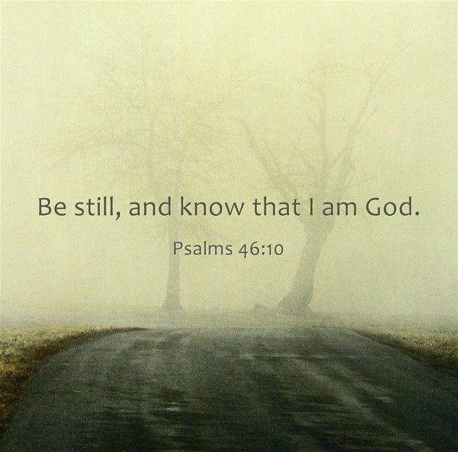 Shhhhh. Be still.