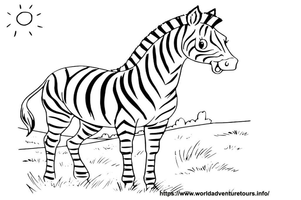 Malvorlage zebra kopf Coloring pages Humanoid sketch Zebra