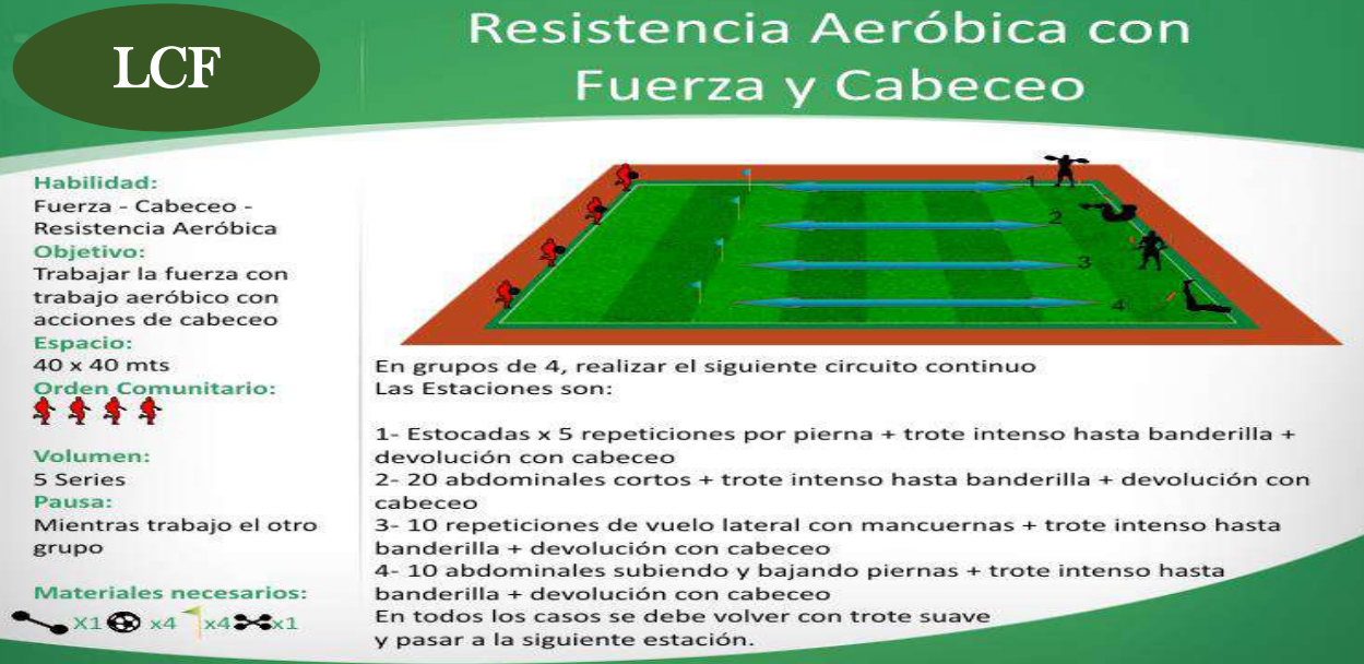Circuito de resistencia aerobica