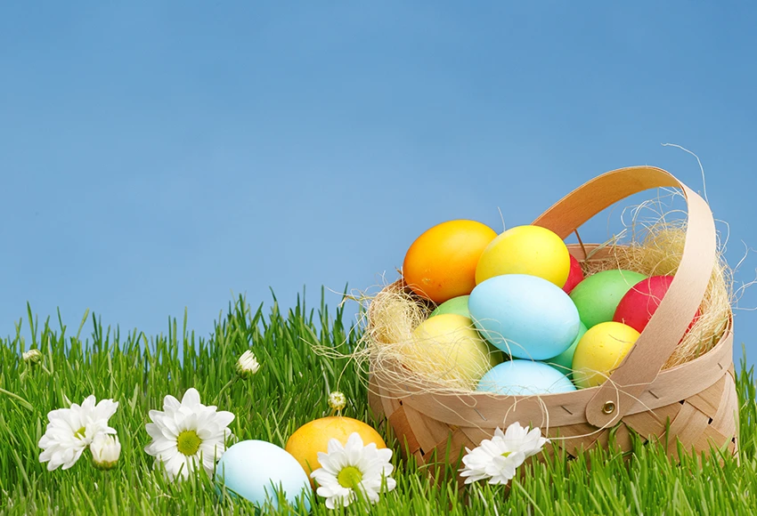 Colorful Easter Eggs Green Grass Happy Easter Photography Backdrop Sh564 Easter Photography Easter Colors Easter Backdrops