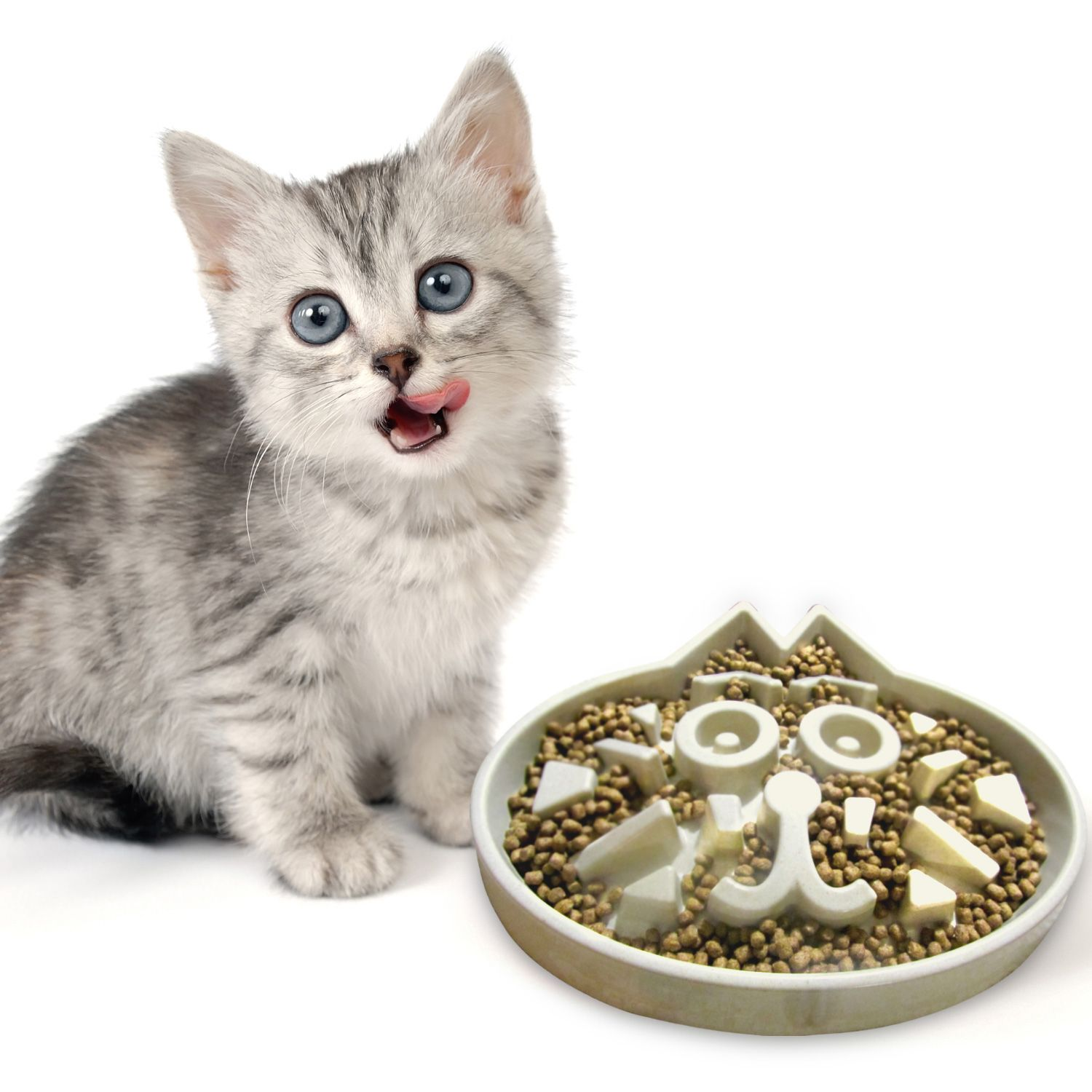 Do you know, best food for your cat? Best cat food, Cat