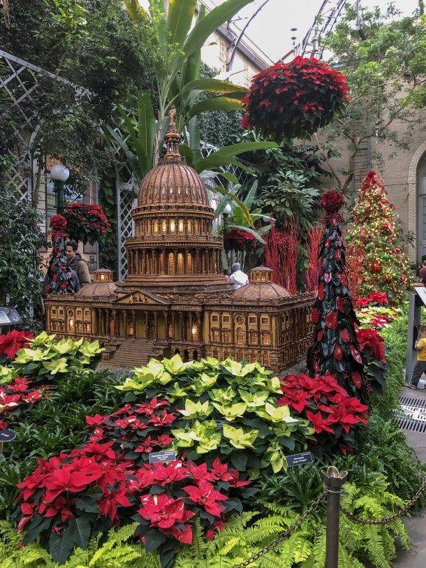 Washington DC In One Day #botanicgarden
