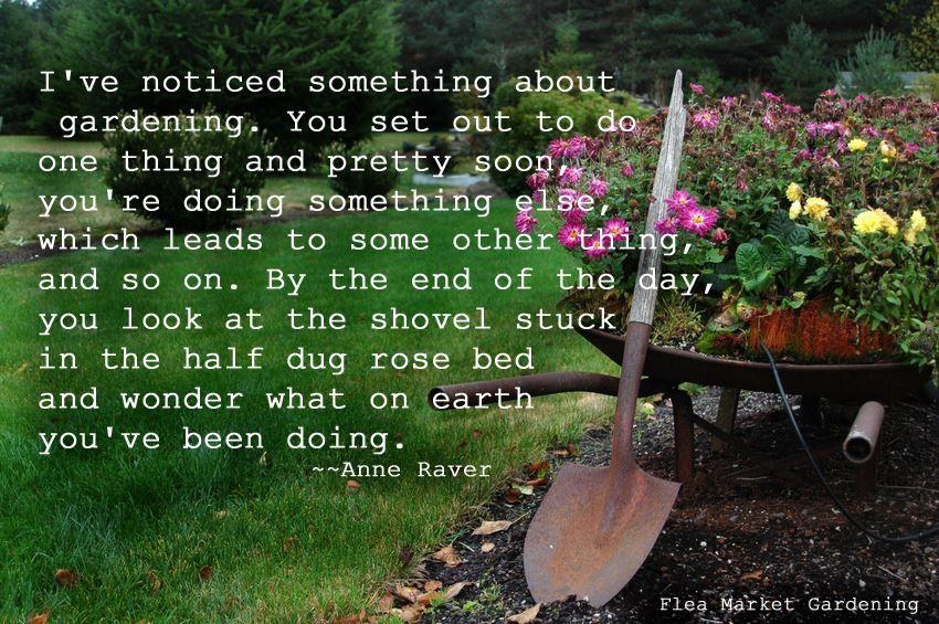 So true! By Flea Market Gardening
