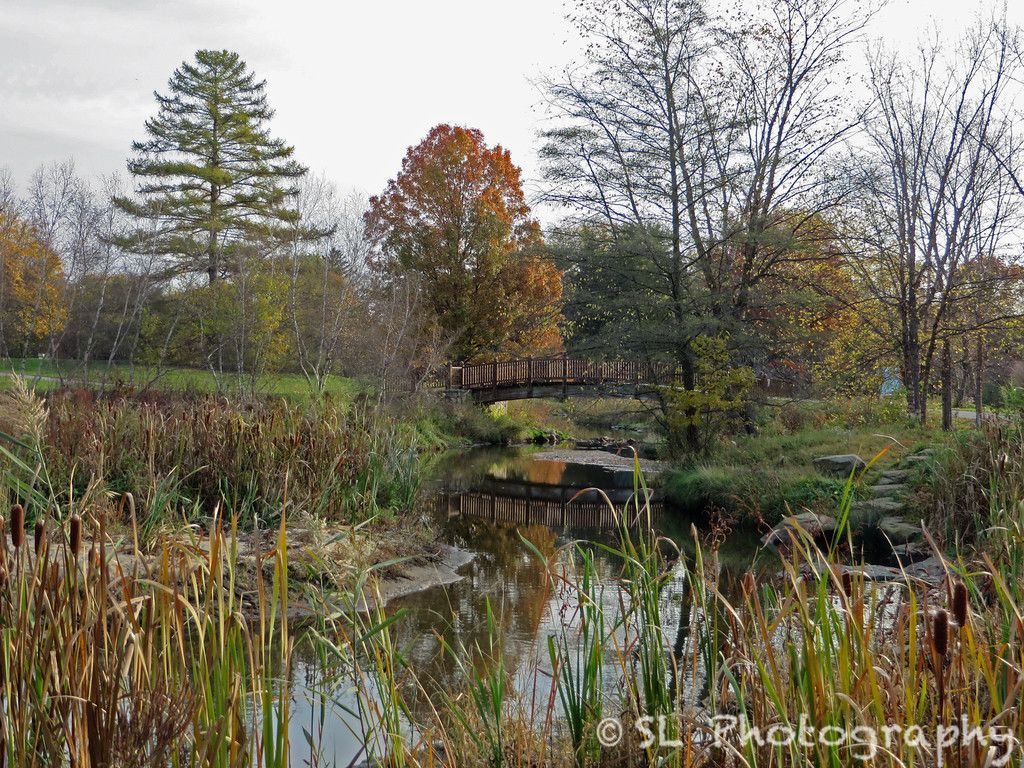 Bare trees partially obscure the arched wooden bridge over the still ...