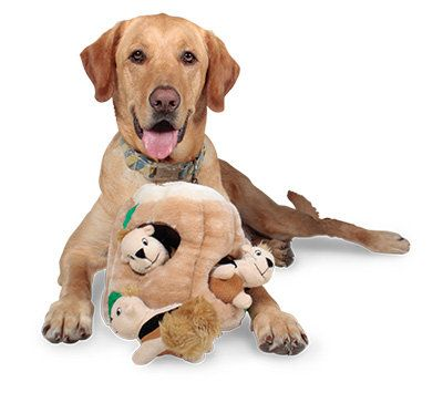 Plush Puppies Hide A Squirrel Dog Toy Video Review Plush Dog