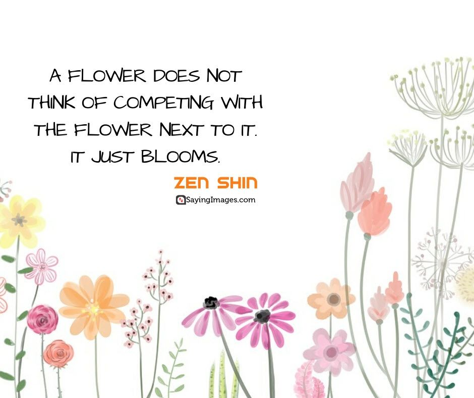 Beautiful Flower Sayings Beautiful Flowers Quotes