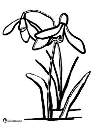 Znalezione Obrazy Dla Zapytania Kwiaty Wiosenne Szablony Peace Gesture Peace