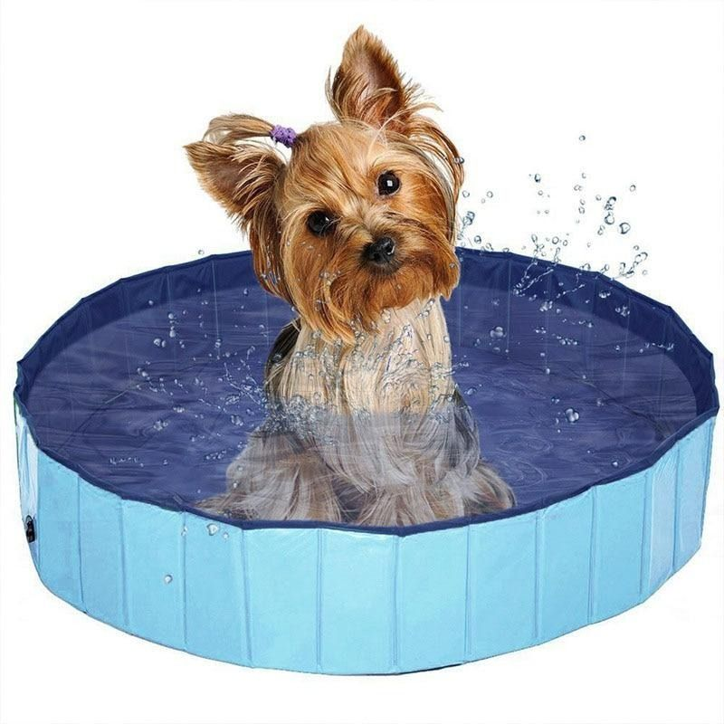Foldable Dog Swimming Pool (With images) Dog swimming
