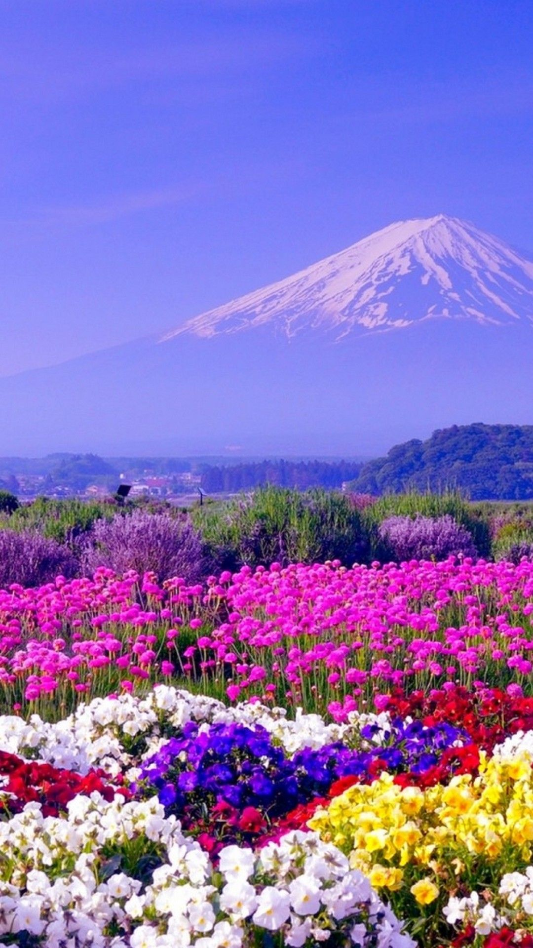 Spring In Japan Nature Beautiful Landscapes Spring Images