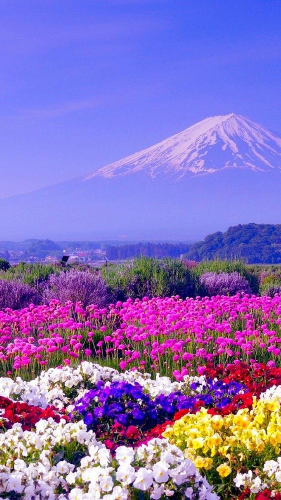 Spring in Japan Nature, Beautiful nature, Nature wallpaper