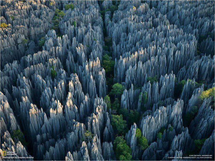 Stone Forest, Madagascar.