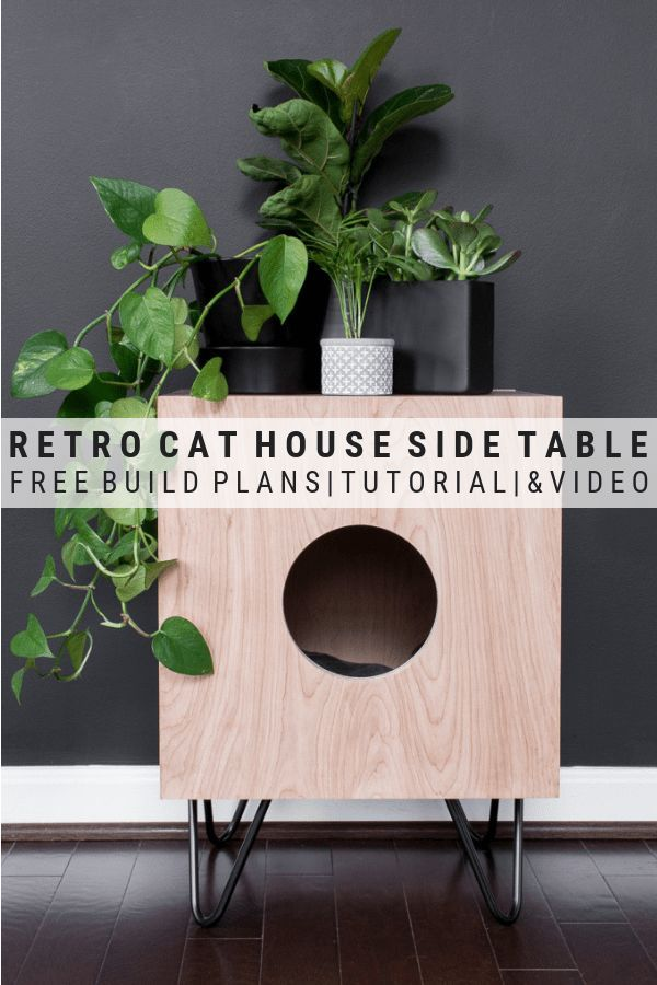 How To Build A Stunning Cat House Side Table For Your Kitties Cat House Diy Cat House Cat Houses Indoor