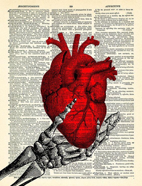 Human Heart Anatomy Skeleton Hand Anatomical Heart Art Print