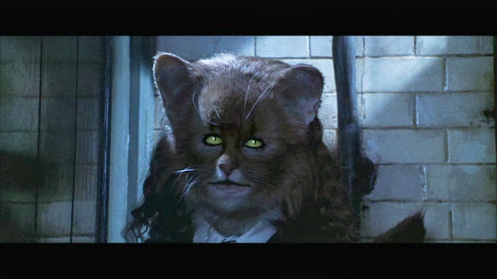 Emma Watson was supposed to star in Cats however her