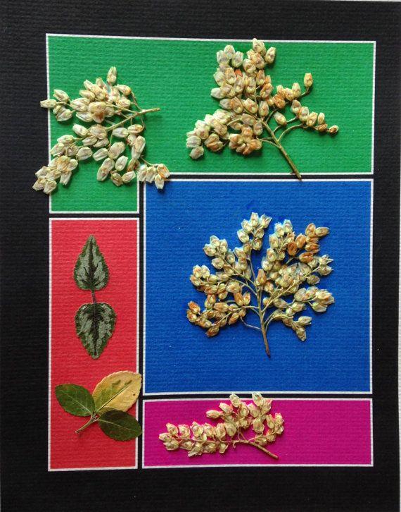 Pressed Botanical Collage  with Azalea by MyStoningtonGarden, $52.00