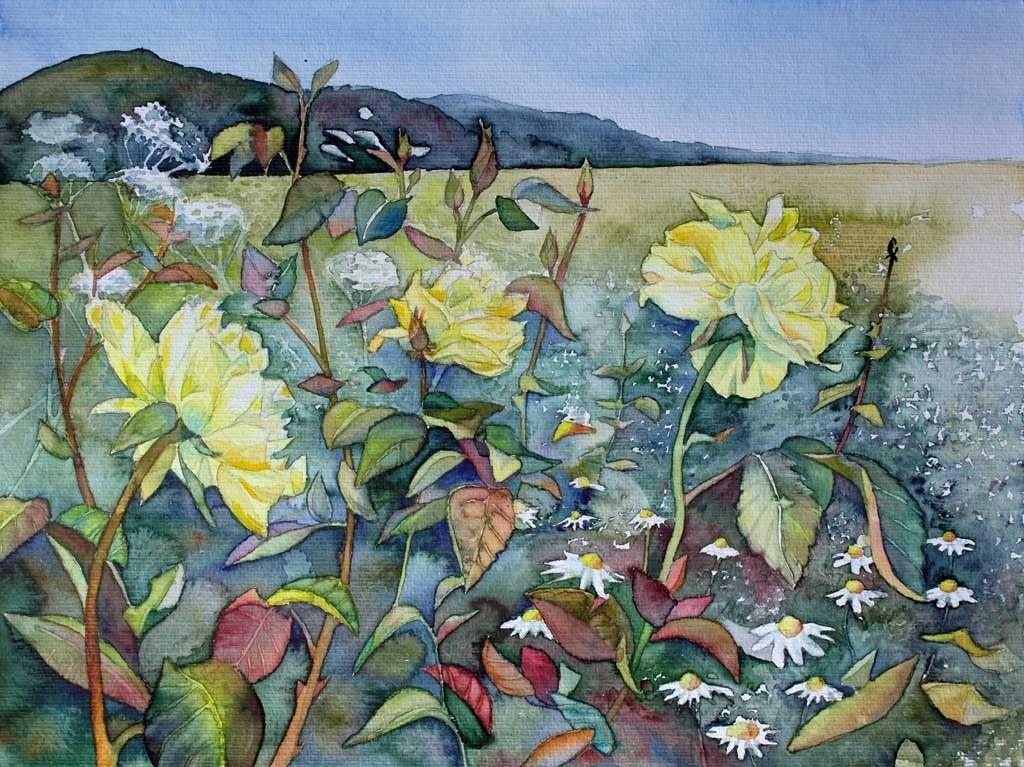 Typische Sommerbluten C Ein Rosen Aquarell Von Frank Koebsch
