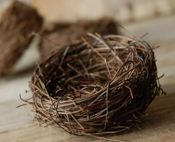 This Pack Of 9 Handmade Bird Nests Are Spun From Dried Vines. Use These  Nests As Containers For Candies Or To Add To Your Centerpieces And Wreaths. Design