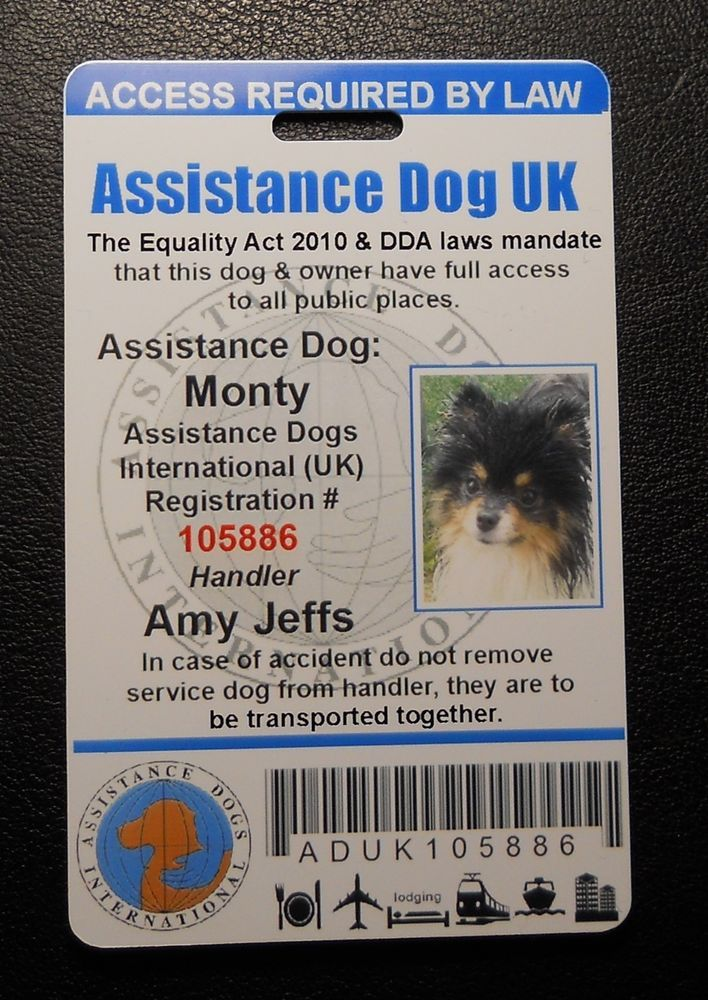 Details About United Kingdom Assistance Dog Id Badge Great Britain