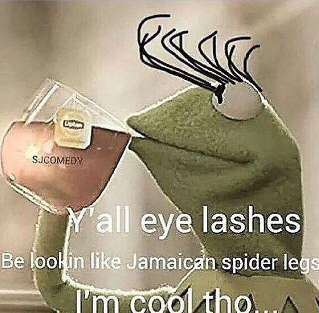 Y'all eyelashes. Hahaha. All these false eyelashes, over ...