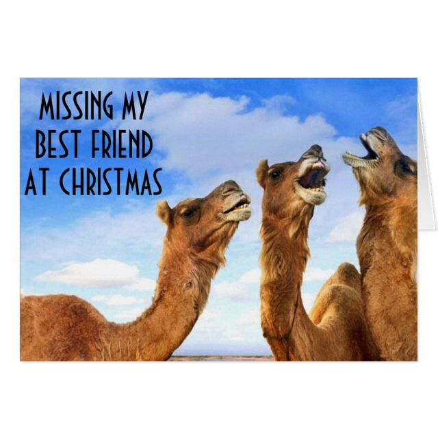 BEST FRIEND=SINGING THE BLUES-MISS U AT CHRISTMAS HOLIDAY