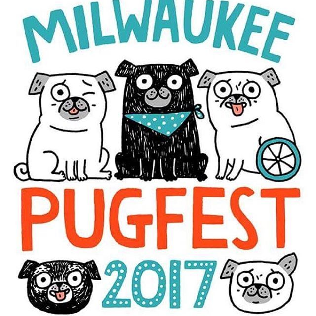 Pugfest Happening This Sunday In Milwaukee Wi I Will Be There