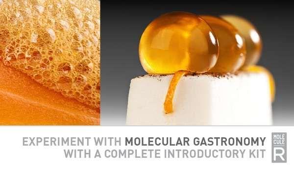 DIY Molecular Gastronomy Kits   Molecular gastronomy, Cuisine and ...