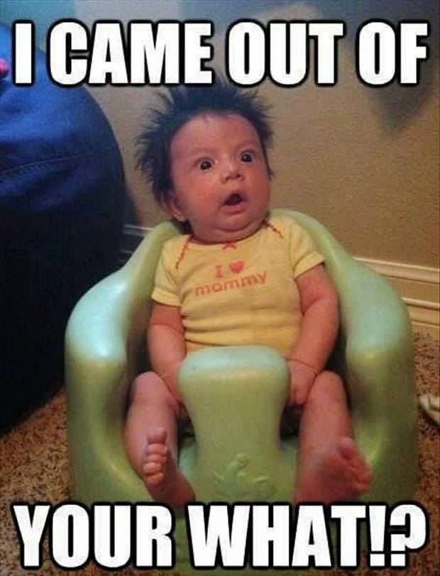 baby came out your what funny pinterest funny jokes meme