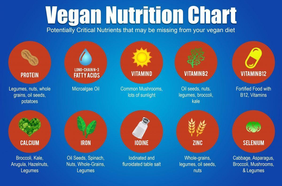 Vegans Of Twitter Unite Against False Nutrition Claims Made On Uk Television News Livekindly